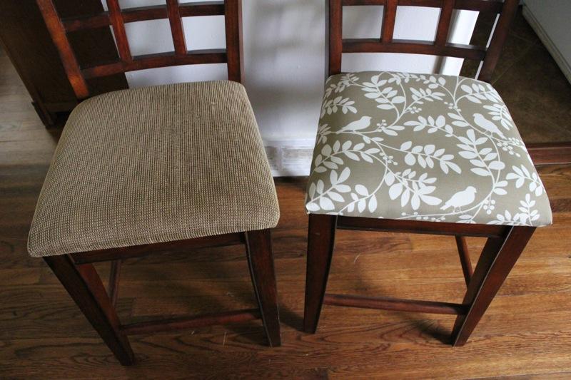 Re upholster dining chairs chair pads cushions for Ideas for reupholstering dining room chairs